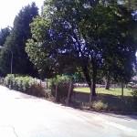 Via Orazio